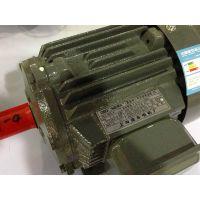 上海德东电机 (YE2-200L2-2 37KW) 厂家直销