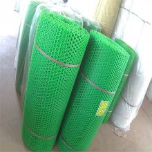 鹅苗养殖网 塑料平网设备 塑料平网养殖网