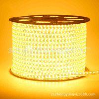 高压灯带卧室客厅软灯带 5050贴片高压60珠高亮防水LED灯带批发