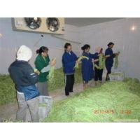 供应广州蔬菜冷库广州蔬菜保鲜库广州蔬菜冷库安装设计