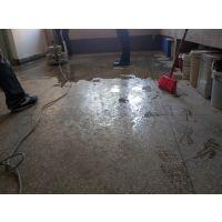 黄圃镇食品厂水磨石翻新—水磨石抛光—车间地面固化