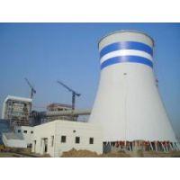 专业电厂水塔内壁外壁除锈防腐施工