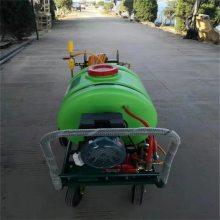 马铃薯专用喷雾器 推拉自如高压喷雾器 润众