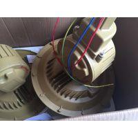 40W 220V 防护等级IP66防爆电磁感应灯