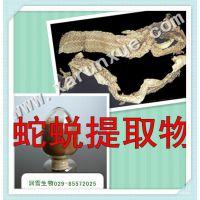 润雪生物 蛇蜕浓缩粉10:1(100g)批发5折,提取物满百包邮