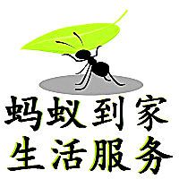 青岛蚂蚁到家生活服务有限公司