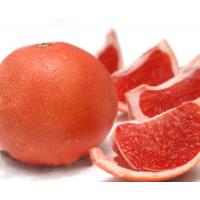 葡萄柚苗多少钱|红肉葡萄柚苗价格|台湾葡萄柚苗批发