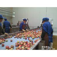 鼎合NFC鲜榨果汁生产线设备
