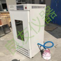 供应HWHS-250恒温恒湿培养箱***霉菌微生物试验箱种子催芽箱