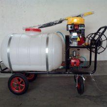 高射程汽油喷雾器 园林树木打药铸钢变速箱喷雾器