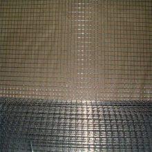 热度电焊网 刺绳焊接网 电焊网哪家好
