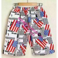 外贸出口男士休闲短裤沙滩裤广州男士短裤沙滩裤清仓