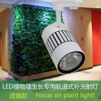 LED室内植物绿墙补光灯/绿植墙生长专用轨道式射灯30瓦高显指XIHV