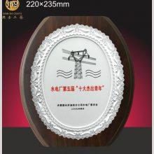苏州外企表彰大会奖牌,实木***金属框纪念品,先进组织表彰奖品