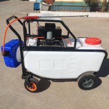 热销旭阳手推式电动喷雾机 150L大容量喷雾器 鸡舍用消毒机