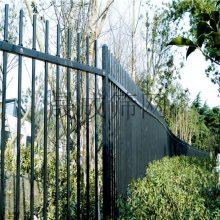 清远防护栅栏 金属护栏栏杆 厂区围墙栅栏白色 pvc绿化隔围栏