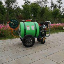 饲养场消毒灭菌喷雾器 山地丘陵果园喷雾器 汽油高压喷雾打药机