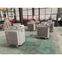 商丘S11-MRD-1000/10 能在水中运行的地埋式变压器