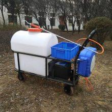 志成推车式电动打药机 园林绿化消杀喷雾机蓄电池手推式喷药机