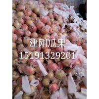 陕西红富士苹果产地批发价格