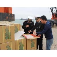 上海进口报关公司丨上海报关代理公司