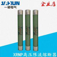 高压限流熔断器XRNP-12/10/0.5/1/2/3.15A 熔管熔芯保护高分断