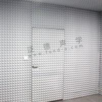 泛德声学 为杜拉维特公司设计建造半消声室 半消音室