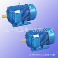 Y132M-8 3KW交流三相异步卧式电动机 上海能垦三相异步电机