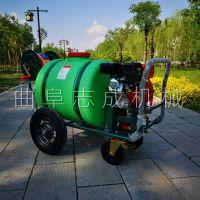 多功能手推打药机 加厚耐用绿色药桶打药机 养殖场消毒喷药机