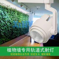 生态雨淋缸水陆缸热带雨淋造景专用植物补光灯XIHV