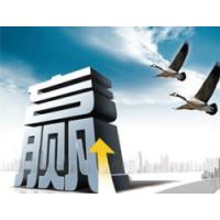 安平县鑫茂菱形网带厂
