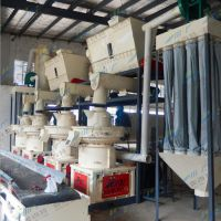 锯末颗粒生产线 木屑秸秆颗粒机行业中的新标杆大型厂家