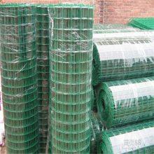 供应荷兰网 圈玉米网 包塑铁丝网