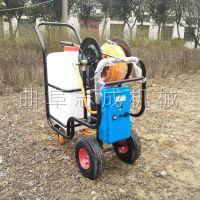 大棚菜园推车式打药机 园林绿化电动喷雾机 蓄电池高压农药喷洒机