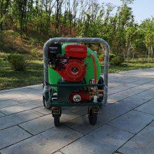 直供河南园林绿化喷洒机 汽油除草杀虫喷雾器 160升辣椒地打药机