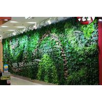 供应墙面绿化 建筑绿化 垂直绿化花盆 防腐防水