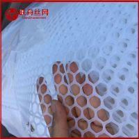 供应塑料网_白色塑料网_抗老塑料网_上饶塑料网_安平塑料网