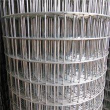 后热镀电焊网 304不锈钢电焊网 镀锌网片