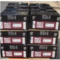 原装大力神蓄电池MPS12-100 大力神12V100AH蓄电池电力设备专用