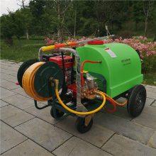 厂家生产300L汽油推车打药机 26柱塞泵高压喷雾器 农用杀虫好帮手