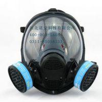 恒源牌903防毒面具防毒全面罩 大视野双过滤器面罩