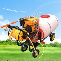 手推式汽油喷雾器 大容量园林防虫害高压汽油打药机