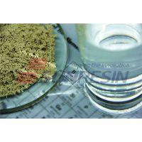 蓝晓科技 吸附树脂颗粒LX-124胞磷胆碱提取分离
