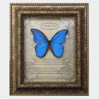 精美复古蝴蝶 定制礼品相框 立体装饰画框 展示品收藏框 标本框