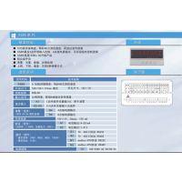 供应昆仑XSD2多通道显示仪表