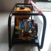 高压喷雾器 农用手推式喷雾器 手推式汽油打药机