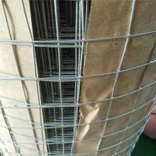 抹墙网电焊网 优质电焊网规格 河北碰焊网