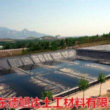 东营鱼池防渗膜 HDPE土工膜制作