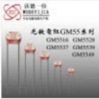 供应5mm光敏电阻5528