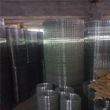 电焊网国家标准 混凝土铁丝网 浸塑电焊网厂家